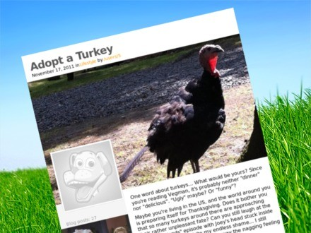 List_adopt-a-turkey_teaser