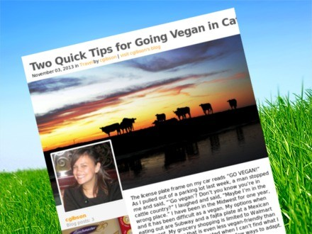 List_two-quick-tips-for-going-vegan-in-cattle-country_teaser